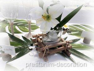 phototphore-bois-flotte-table-nature-exotique